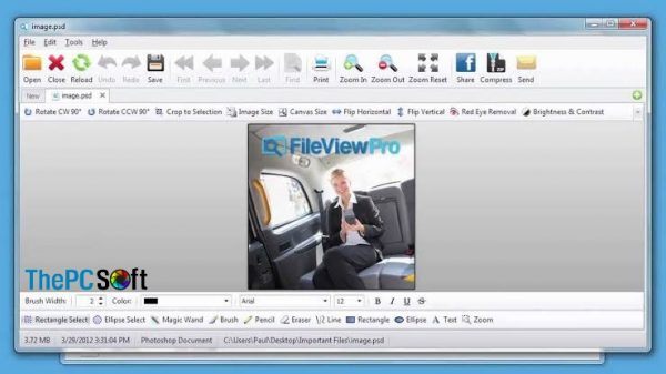FileViewPro 2020 crack free